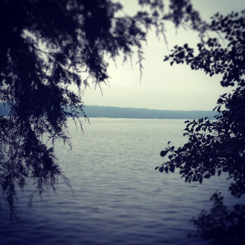 Photo of the lake from my morning walk